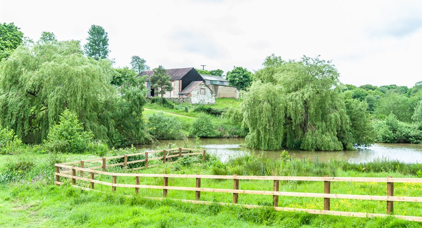 Ninham Country Holidays - Pond