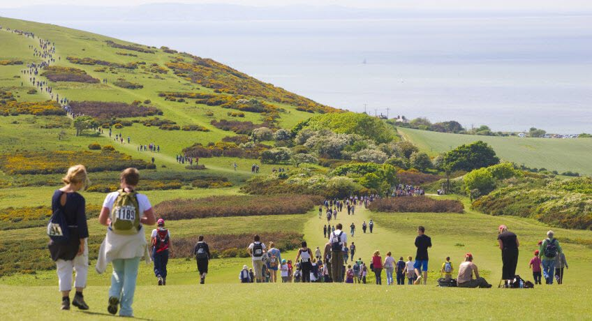 Walk the Wight downs