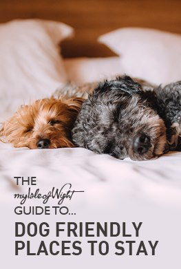 Dog Friendly Places to Stay