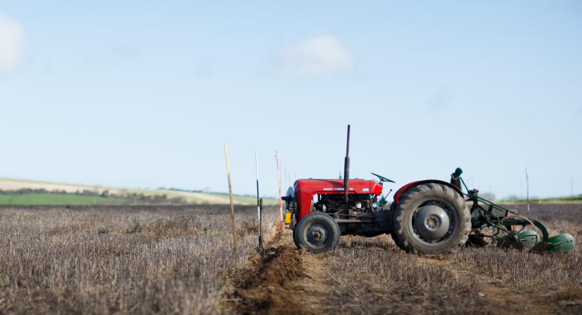 Memorial Ploughing Match Landscape
