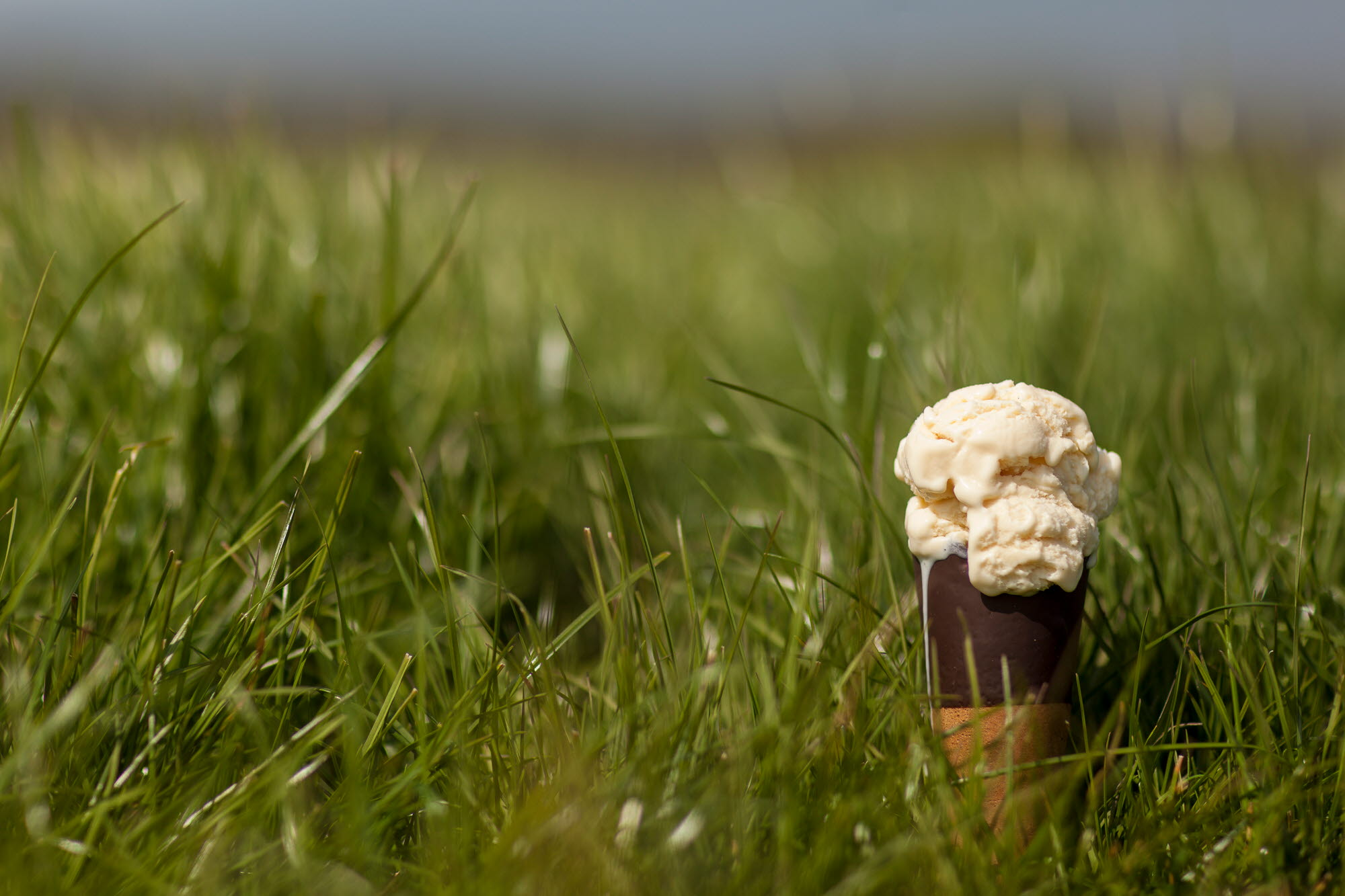 Minghella Ice Cream Cone in Grass