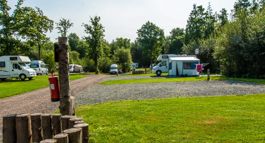 Whitefield Forest Touring Park pitches, Ryde, Isle of Wight