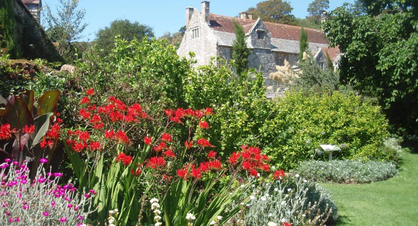 Mottistone Gardens, Mottistone, Isle of Wight