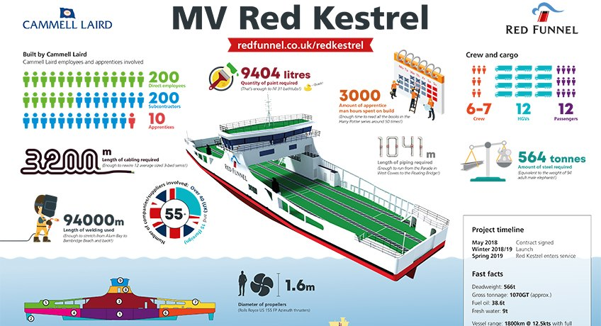 Red Kestrel Infographic