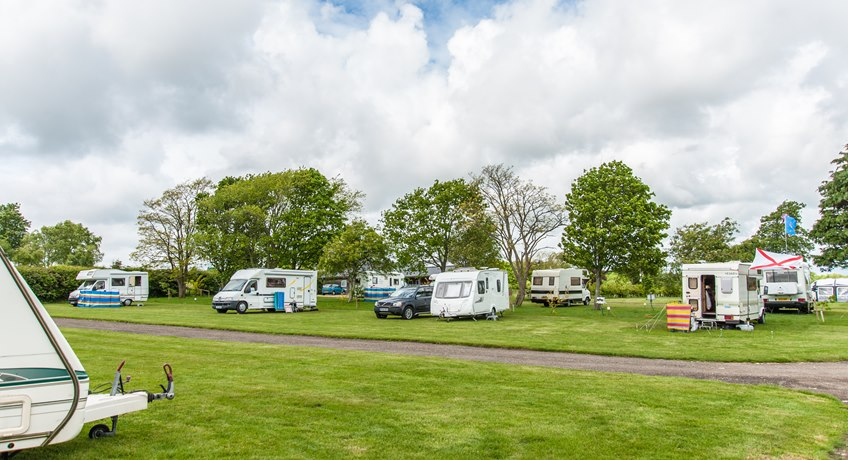 Ninham Country Holidays - Pitches