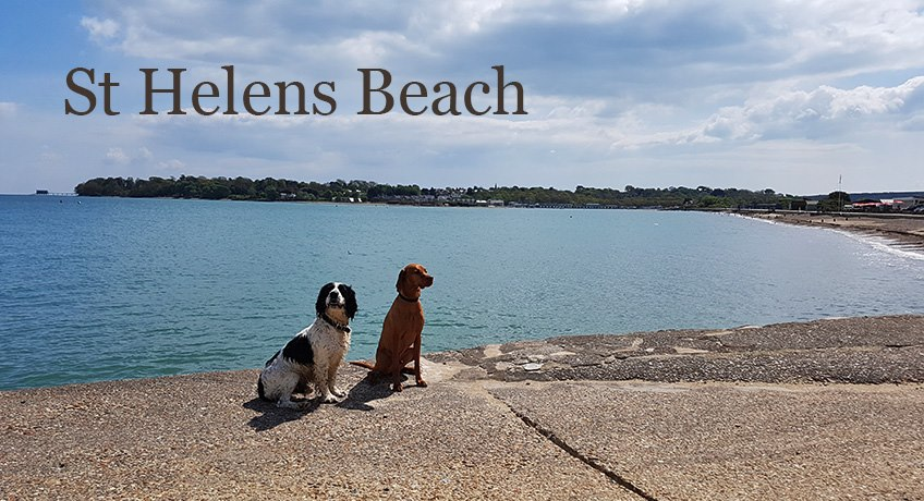 St Helens Beach with Spike and Dog Friend