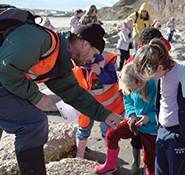 Fossil-Hunt-Search-Listing