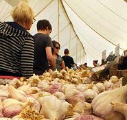 Garlic on sale Isle of Wight Garlic Festival
